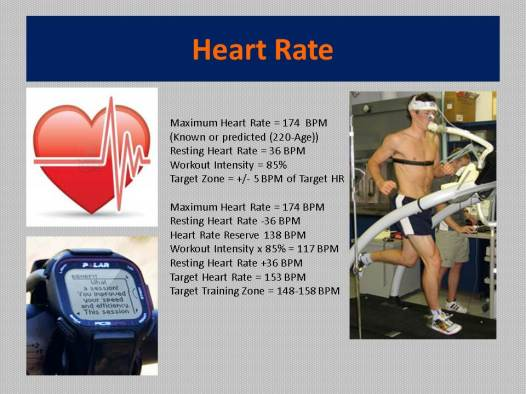 Running On Indy Heart Rate Training Pic